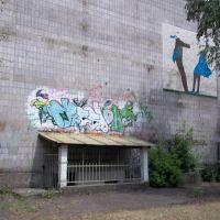 Graffiti, Коростень