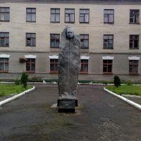 Памятник у больницы, Коростышев