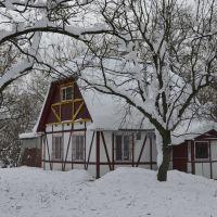 Зима в Коростышеве. Парк усадьбы Олизаров., Коростышев