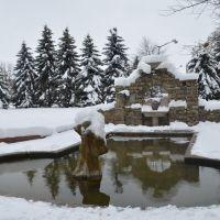 Зима в Коростышеве. Парк усадьбы Олизаров, Коростышев
