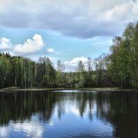 Лесное озеро, Лугины