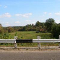 Road & field, Лугины