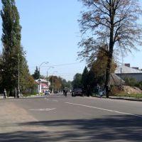 Street, Лугины