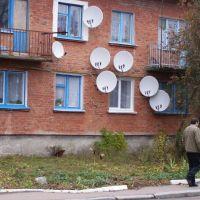 SP TV, Лугины