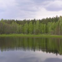 Крупчатка, Лугины