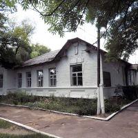 больница (1905) 2., Лугины