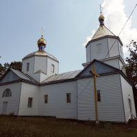 церковь Рождества Богородицы (н.19в), Лугины