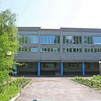 Школа №2, Народичи