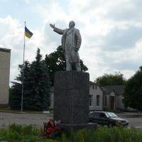 Ленин под жовто-блакитним флагом. Народичи, Народичи