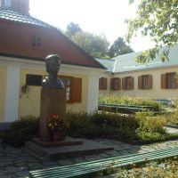 Національний музей ім. Лесі Українки., Новоград-Волынский