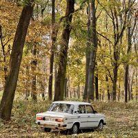 Парк Перемоги, ретро автомобіль, осінь, Новоград-Волынский