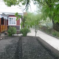 У дворі, Олевск