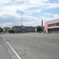The Sobornaya Place, Радомышль
