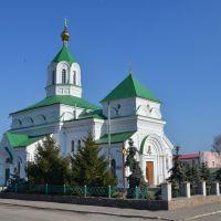 Радомишль. Миколаївський собор. 1864-83 рр. / Radomishl. Nicholas Cathedral. 1864-83, Радомышль
