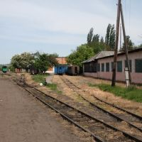Locomotive Depot, Берегово
