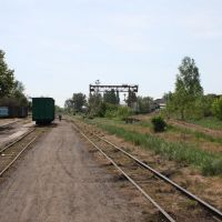 Narrow Gage Railway Station, Берегово