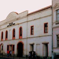 Illyes Gyula Hungarian State Theatre - Illyés Gyula Állami Magyar Nemzeti Színház, Берегово