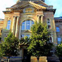 Transcarpathian Hungarian II.Rákóczi Francis College - II.Rákóczi Ferenc Kárpátaljai Magyar Főiskola, Берегово