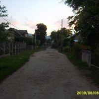 Лужная, Буштына