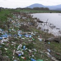 Plastic trash everywhere in the floodplain of the Tisa River, Буштына