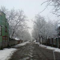 Буштино, вул. Молодіжна, Буштына