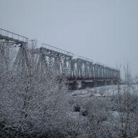 Зима, Буштына