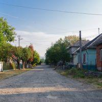 Великий Березний (Velykyj Bereznyj), Великий Березный