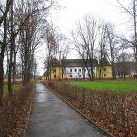 парк навколо палацу Перені * park around the Perényi palace, Виноградов