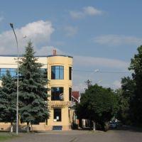Nagyszőlős/Sevlush/Vynohradiv Bank, Виноградов