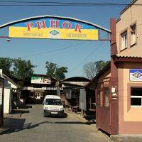 Великий базар (Big market), Виноградов