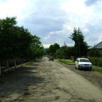 Іршава 005, Irshava 005 (вул. Шкільна), Иршава