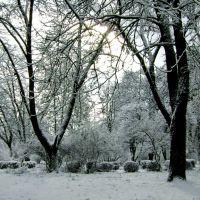 Зимовий Парк, Иршава