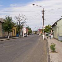 Streets of Irshava, Иршава
