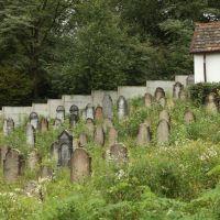 Jewish cemetery in Irshava, Иршава