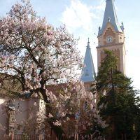 Весной / In the spring, Мукачево