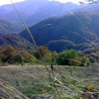 Вид із Лисої гори, Рахов