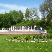 Elhurcoltak szolyvai emlékparkja (Свалявський меморіальний парк), Свалява