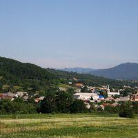 Голубиное, Свалява