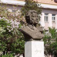 Pushkin, Ужгород