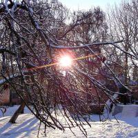 Зима пришла (21.01.2012), Ужгород