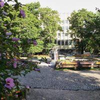 Сквер  /  Public garden, Ужгород