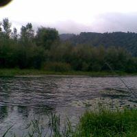 Старое русло р.Тисса, Хуст