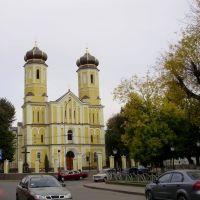 Униатский Свято-Вознесенский собор, Хуст