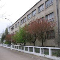 Ukrainian School, Чоп