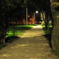 Парк ночью, Акимовка