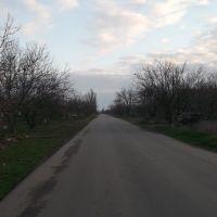 долгая дорога по улице революции, Акимовка