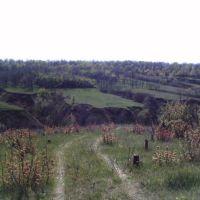 Барановая балка, Балабино