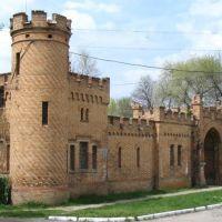 Замок, Васильевка