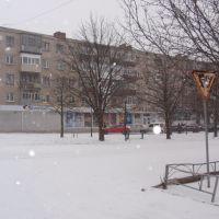 Славутич, Васильевка