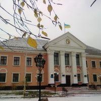 Головна будівля міста, Васильевка